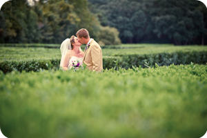 Melissa wedding photo testimonial