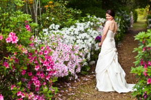 Middleton Place Bridal Portrait (2)