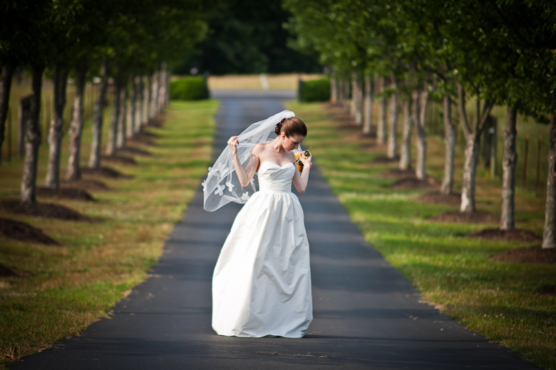 bridal portrait simpsonville