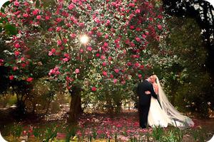 jenniffer hilton wedding photographer testimonial