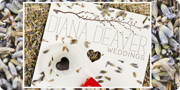 heart hole punch wedding photography custom branding packaging