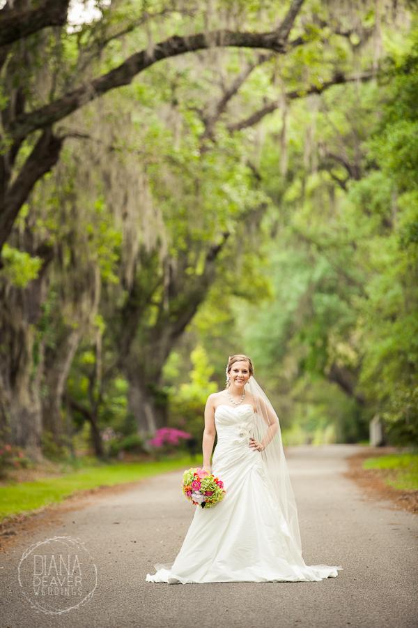 A bridal portrait at Magnolia Plantation