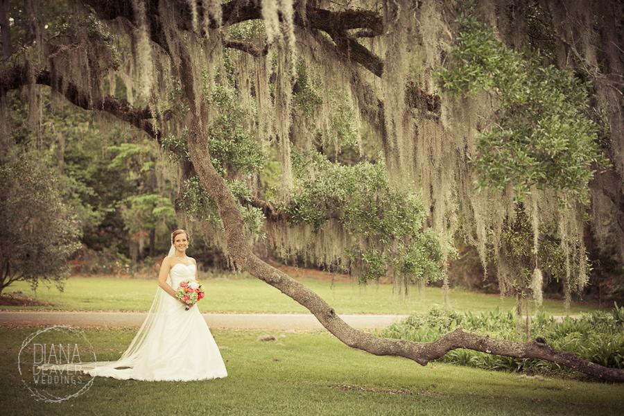 Magnolia Plantation- Wedding Venue Charleston SC - Diana ...
