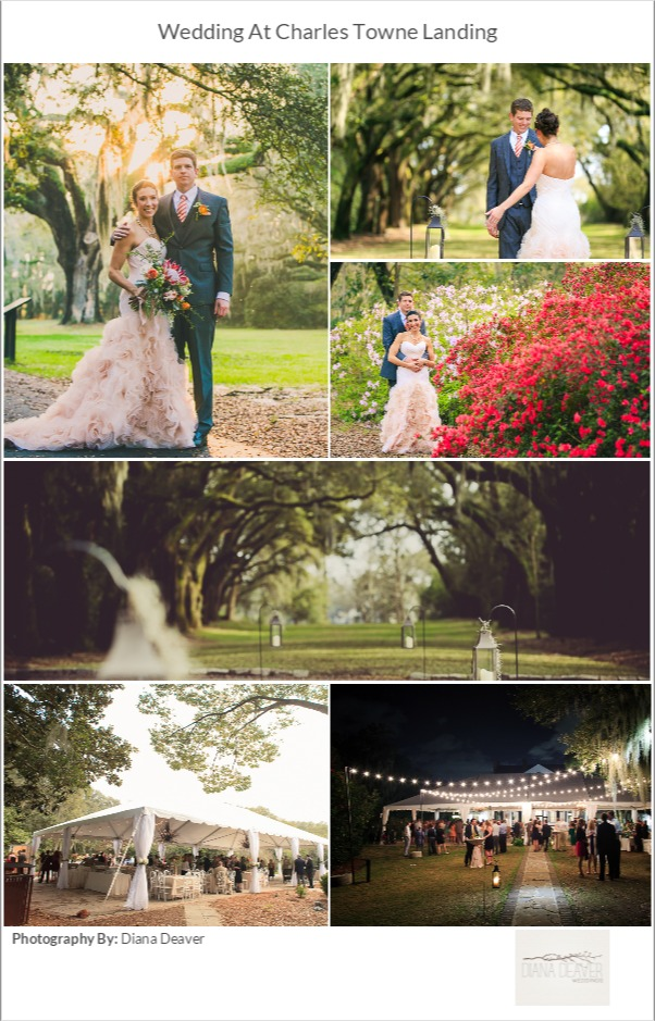 plantation wedding venue charleston sc