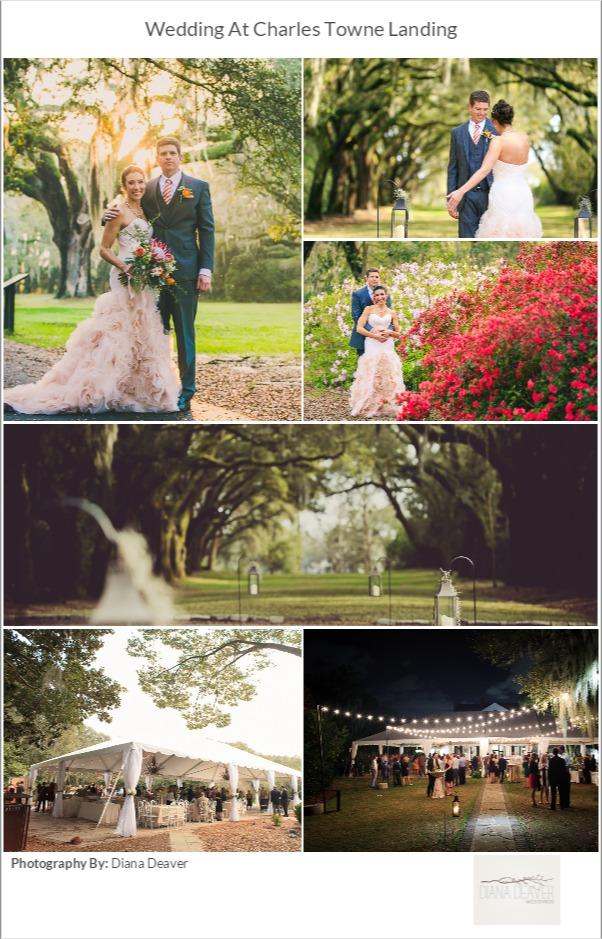 plantation wedding venue charleston sc