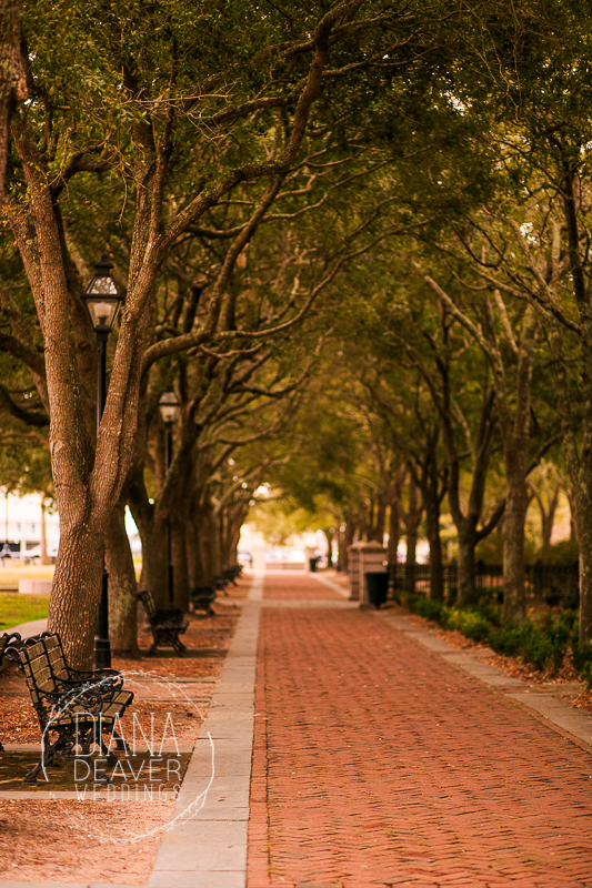 engagement session downtown charleston-10
